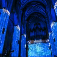 inTEMPOréel : blue session. 4 juin 2016, collégiale Saint-Salvi, Albi